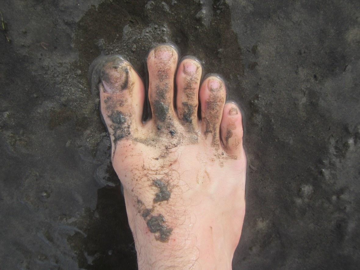 Muddy Foot