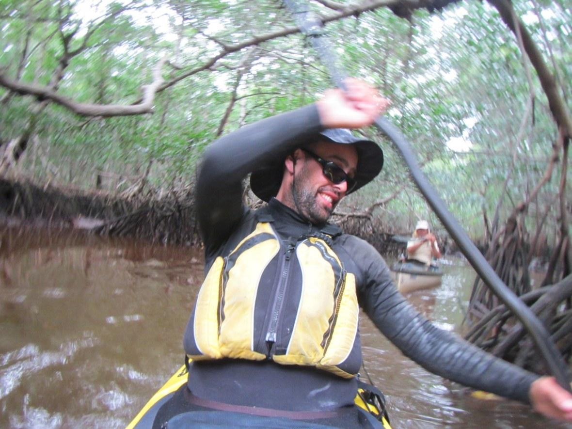 Wild Everglades